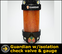 Air Sentry Guardian with Valve and Gauge